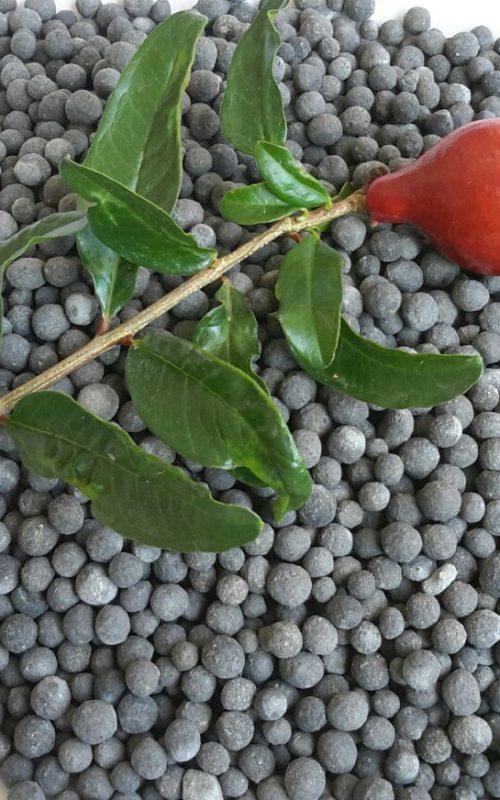Product - Organic Potassium Fertilizer
